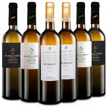 Martúe Lote Degustación Vino Blanco Nieva D.O. Rueda, 2 x Verdejo, 2 x Pie Franco, 2 x Sauvignon Blanc, Pack 6 botellas